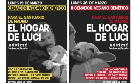 El Hogar de Luci